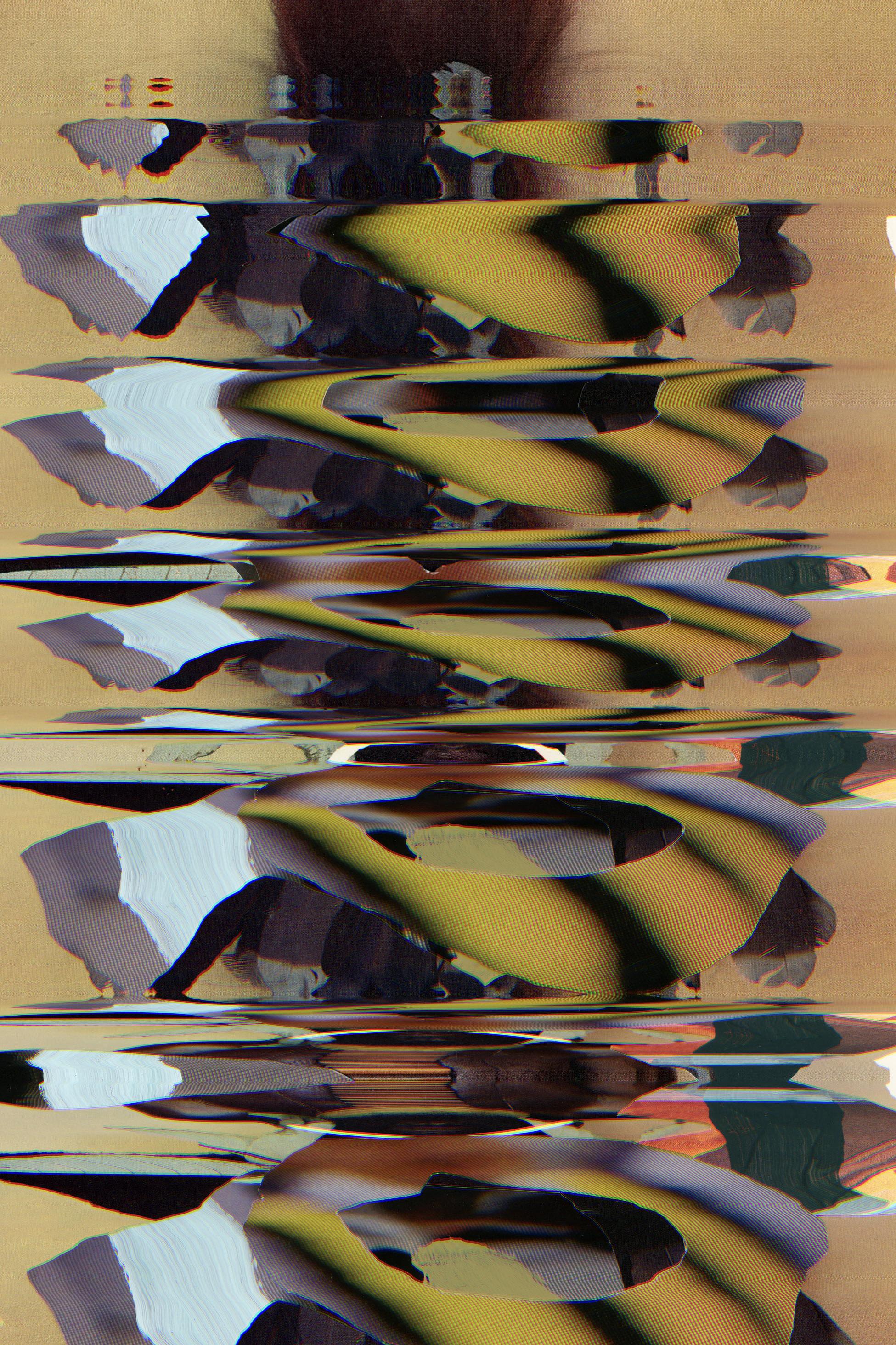 4-PhenotypeOriginal9.jpg