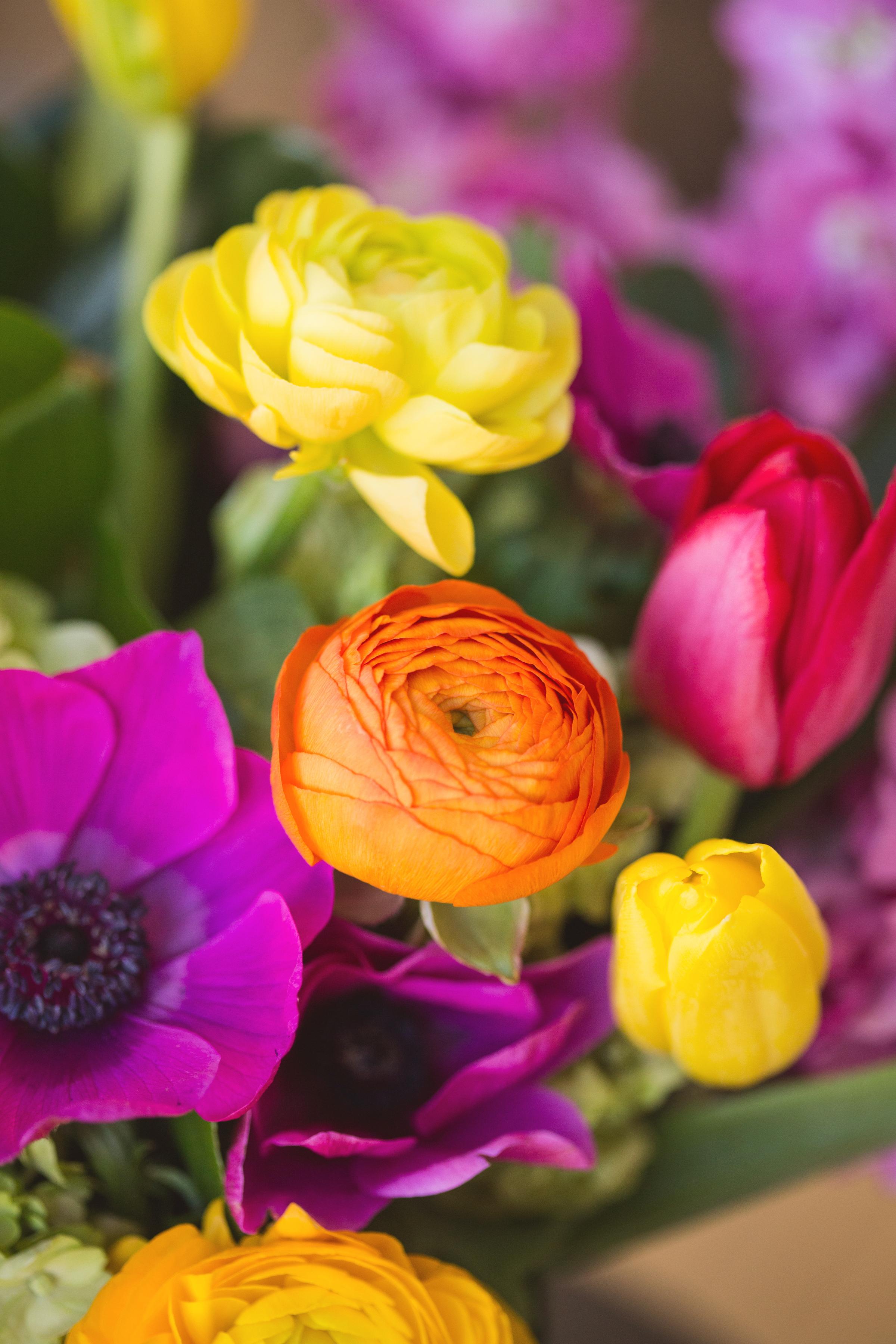 Bold Wedding Colours - Florist in Winnipeg