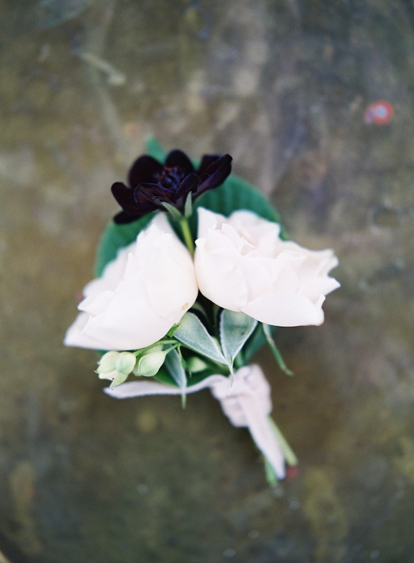 Spray Rose and Cosmos Boutonniere - Stone House Creative