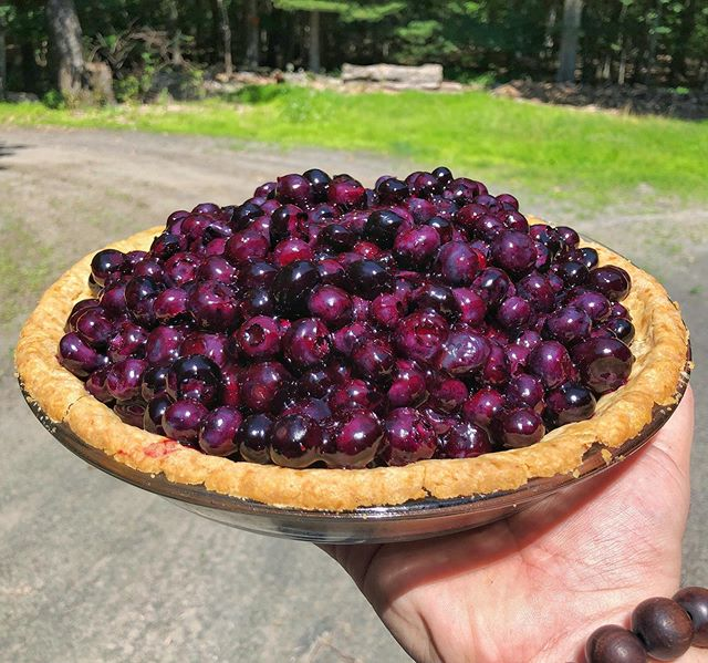 🇺🇸Forth of July Pie.🇺🇸 North Jersey blue berry with butter crust and sour cream. Learned this recipe at @bubbys years ago and has always been a favorite. Hoping everyone had a great holiday.