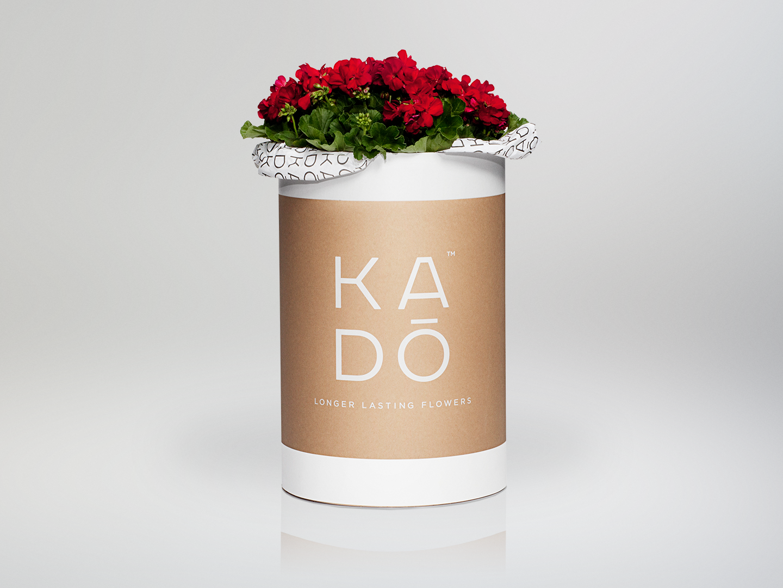 Kado-Barrell.png
