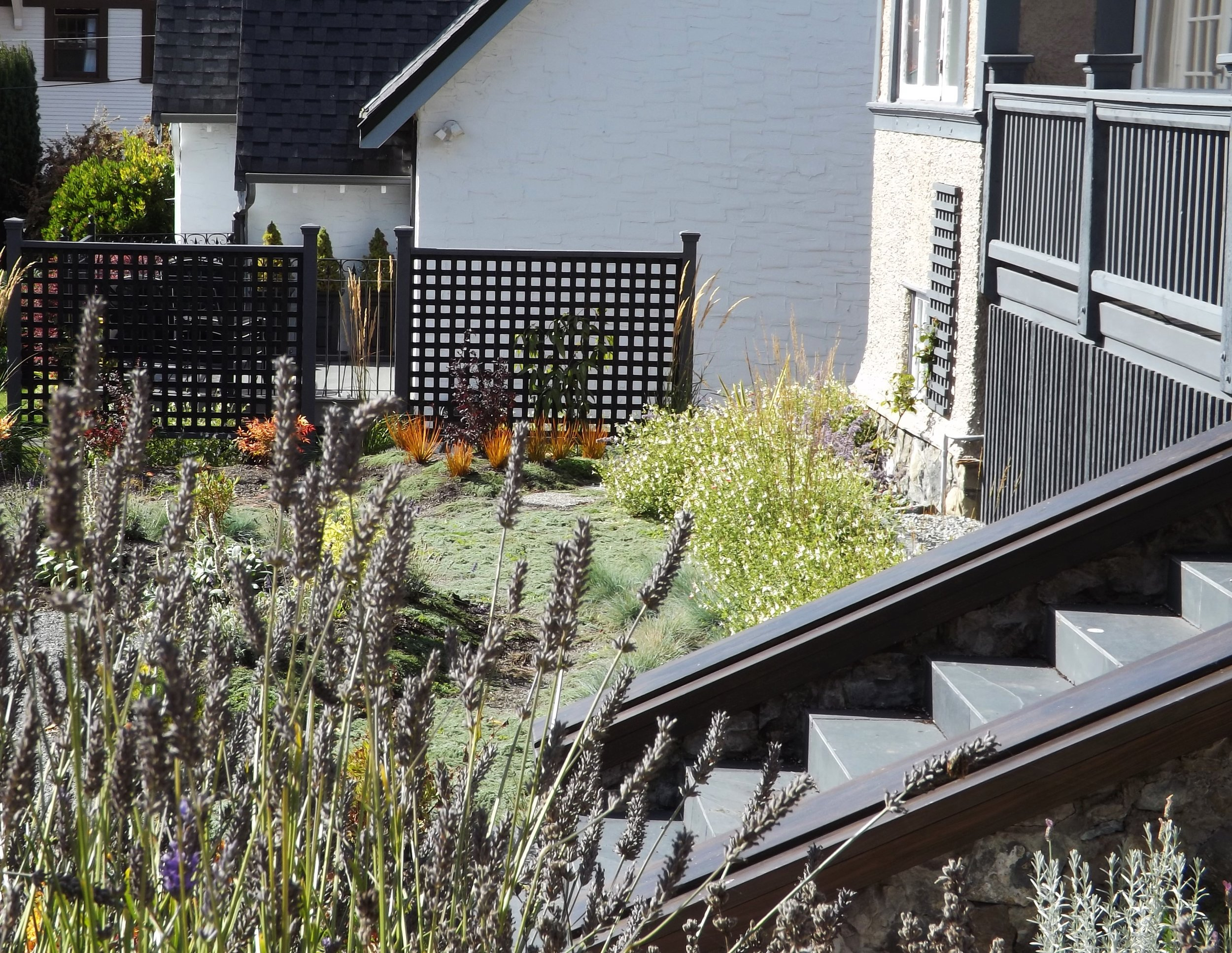 Lavender, sage, rosemary and oregano are some of the vibrant perennials brightening the garden. The crumbling staircase was repaired and features black slate tiles and a new cap made from heavy fir planks with black stain