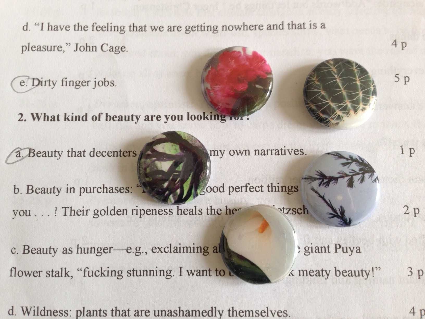 """At PsychoBOTANICA, more than 35 people completed our """"gumball"""" questionnaire: they began by choosing 7 words from a page of words (from the  Biotic Portal index, A-F), then used those words to answer 7 questions about their affiliation with nature, counted the points allotted to each answer and checked their gumball—our improvised list of nature affiliations (playful, wildlife protector, activist, dreamer/activist, primordialist) inspired by E. O. Wilson's study of biophilic relations in his  Biophilia Hypothosis . Participants picked up a button that matched their affiliation, and some answered our question about their first memory of a garden. Here are their answers, preceded by the 7 words they chose.    Aberration/airflow/barn owl boxes/cheese sandwiches/damask rose/Dutchman's pipevine/first memory of a garden:  Rusty metal staircase. The smell of pigeon shit and fig leaves. Rot.    Asters/bees/blue/ chaos/cork oak/dawn/fire:  My grandfather's garden —marigolds, tomatoes, cucumbers, grass. On my hands and knees, lowing like a cow, eating grass, trying to find a four-leaf clover. Never did.    Arrow bamboo/bats/blue/borrowed views/chain fern/dispersal/eye-to-eye:  Eating too many raw green beans and sitting under vine holding tummy. Then walking home on red cinder road. — Diana    Arcadia/bees/California fuchsia/creek/elephants in the room/endangered/feral:  Running through a gorgeous green English garden with my sister, pretending to be fairies. She had a natural trilling whistle, the perfect fairy sound. —Liz    Arousal/belly plants/California sagebrush/dirty finger jobs/ecstatic/euphorbia/feral:  An expanse of dicondra, room to run and roll and stand on my head and clamber over railroad ties and under agaves and between scotch broom (smell them) and up a eucalyptus tree and feel it sway with me. —Rebecca    Arcadia/bats/birds/chaos/death/documented/effusion:    Watching snails in calla lilies, putting them in a box, watching them escape. Climbing an oak tree. """