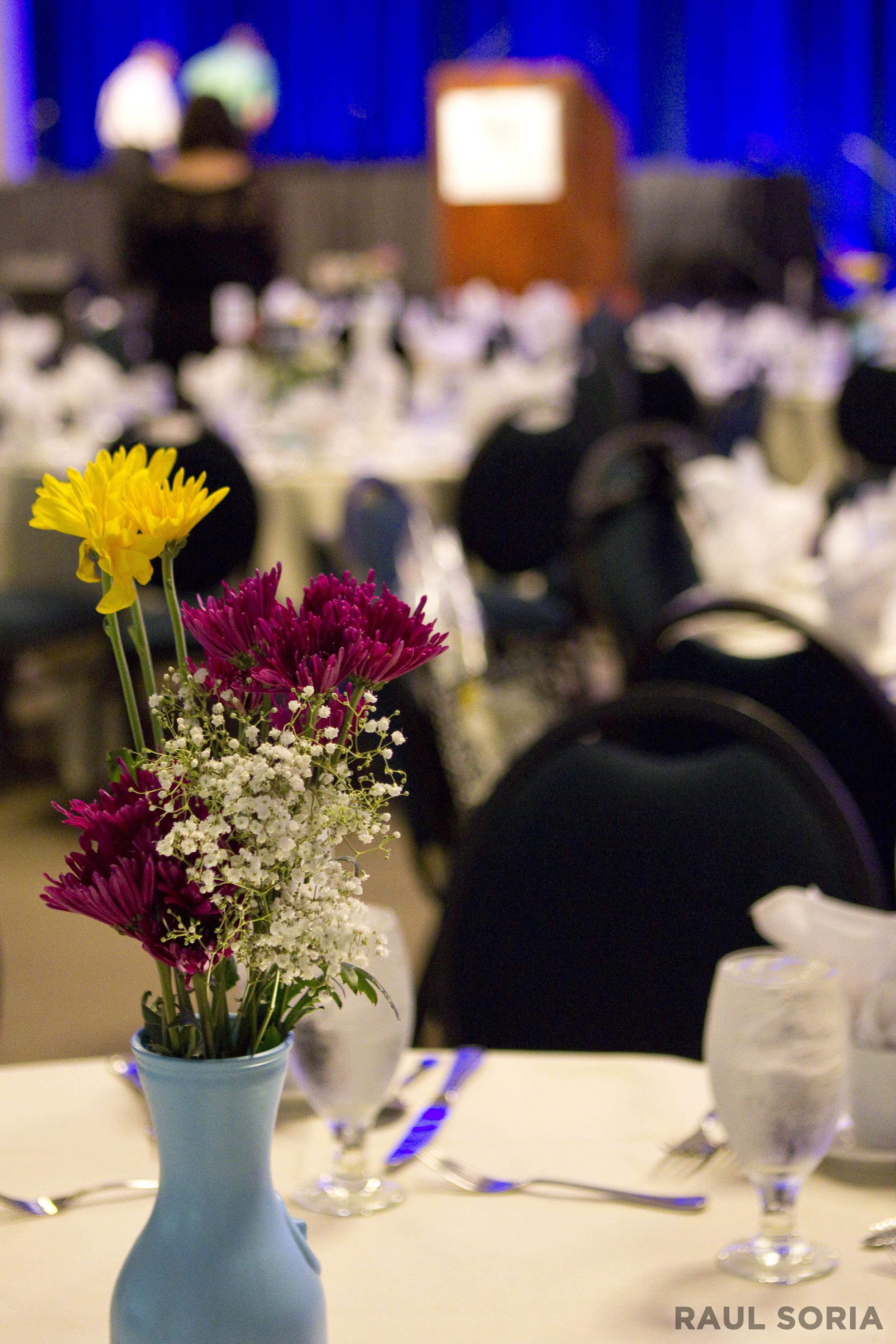 Pookela Awards_081015_01_RS.jpg
