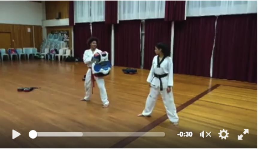 Kicks and Drills — Titirangi Taekwondo