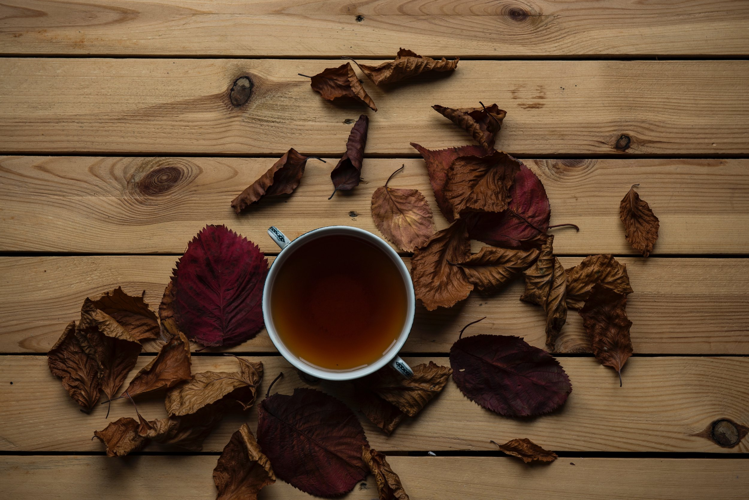The new range of asha tea - perfect to unwind and free your mind this autumn.