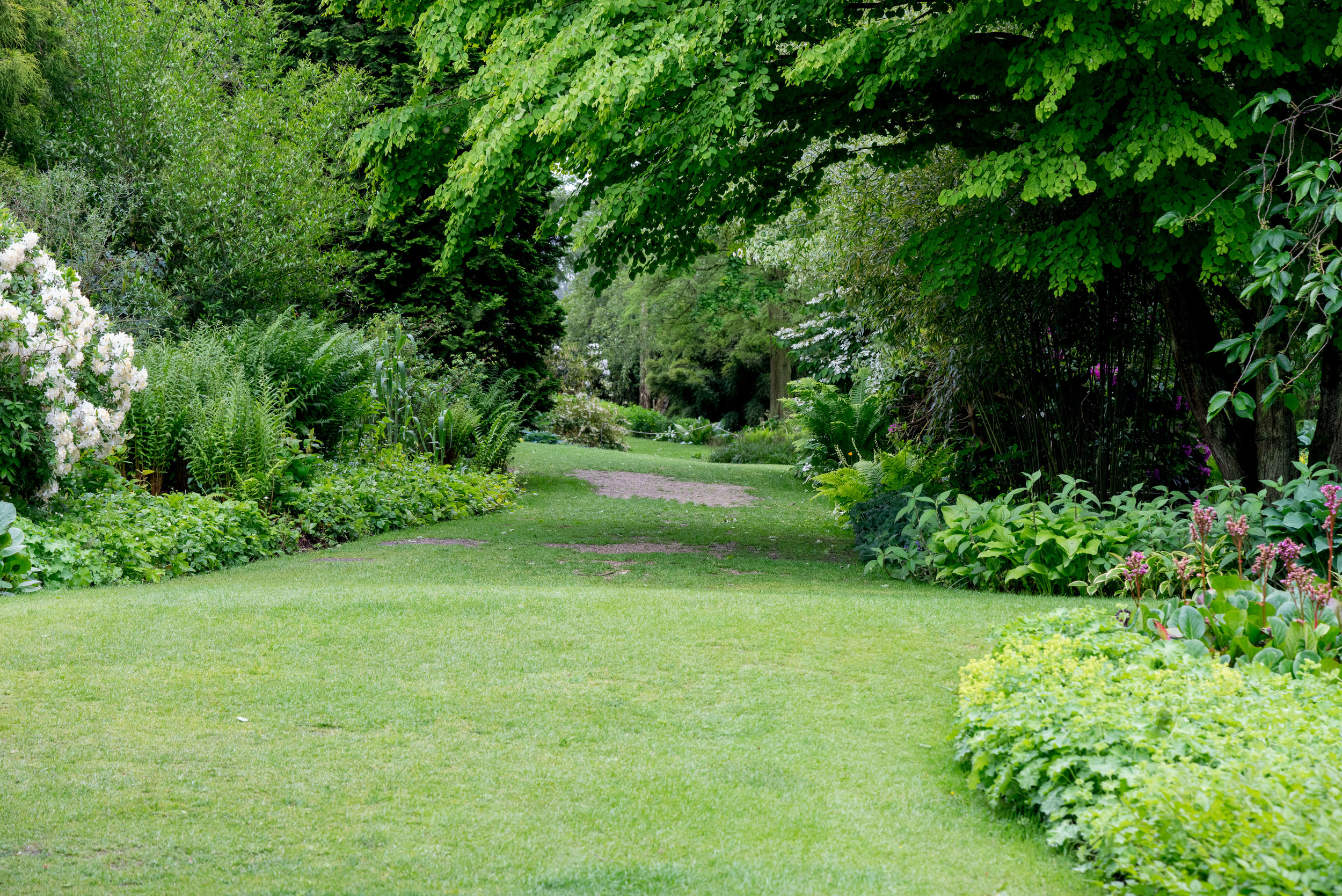 Beth Chattos garden Mai 2016