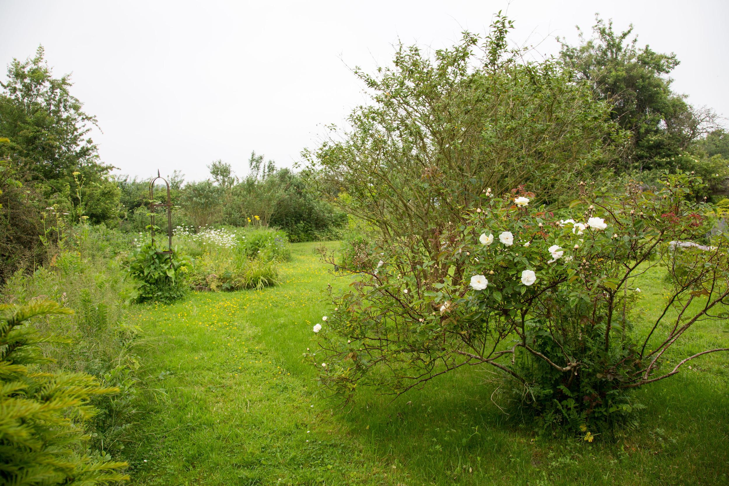 Iden crofts Garten (3009 von 14).jpg
