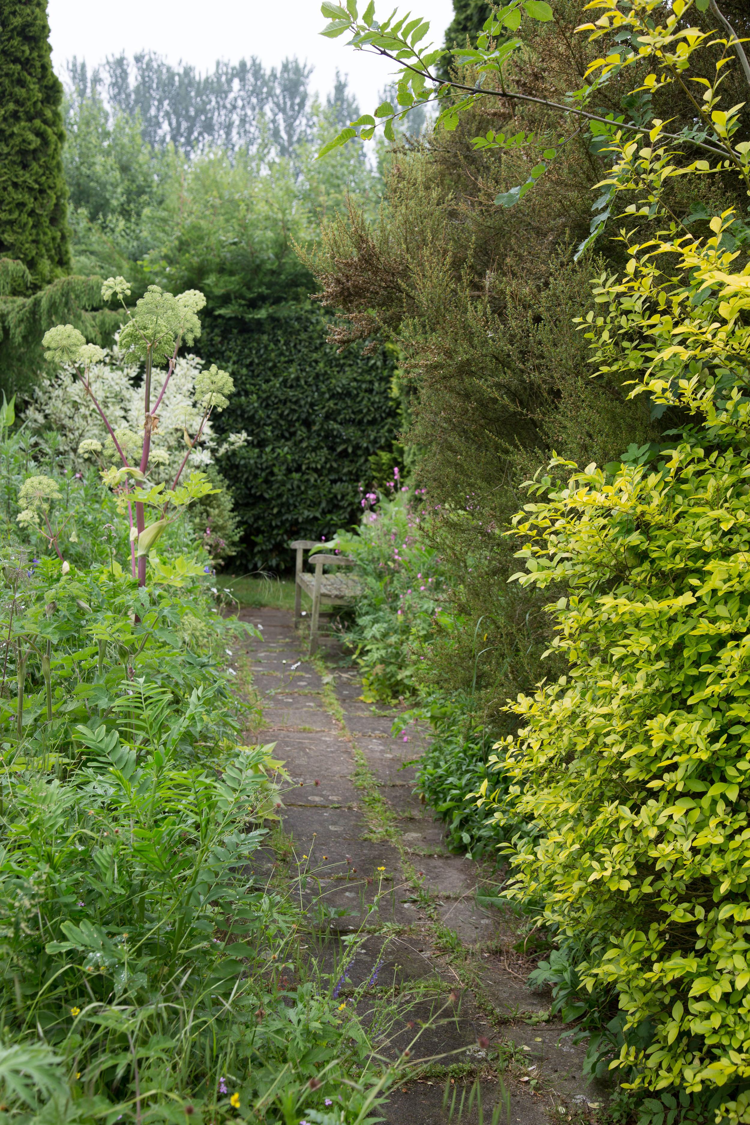 Iden crofts Garten (3011 von 14).jpg