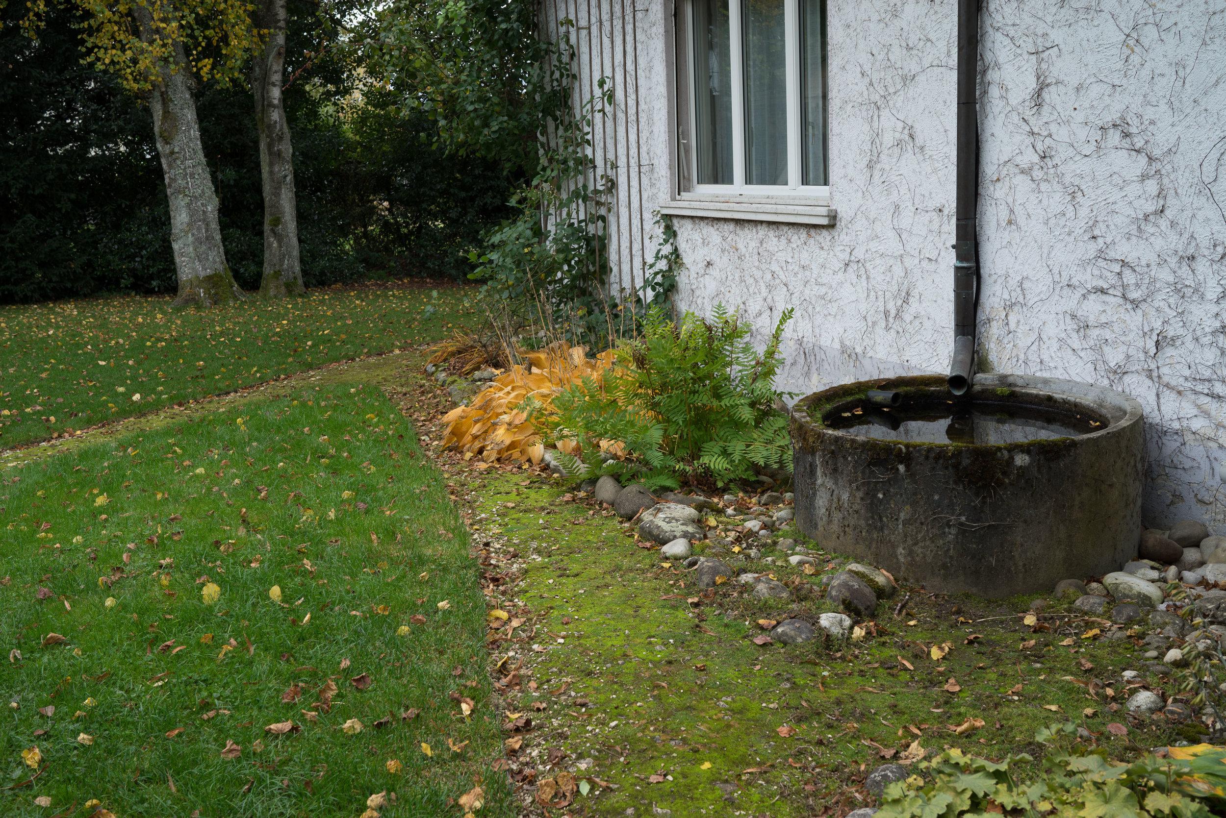 Oktobergarten (3002 von 3).jpg
