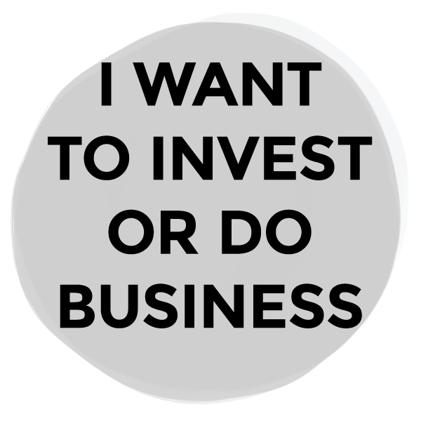 Investor and business visas