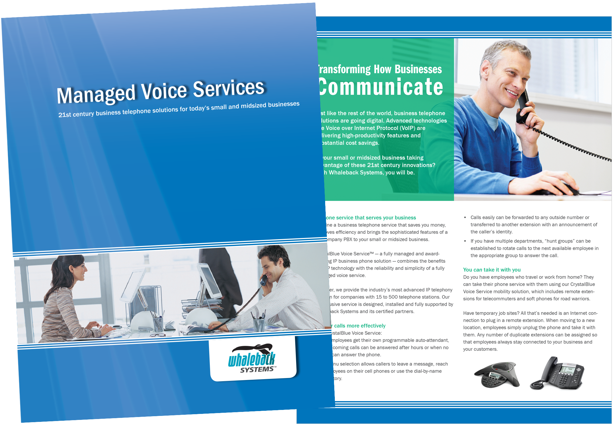 Brochure for Whaleback Systems