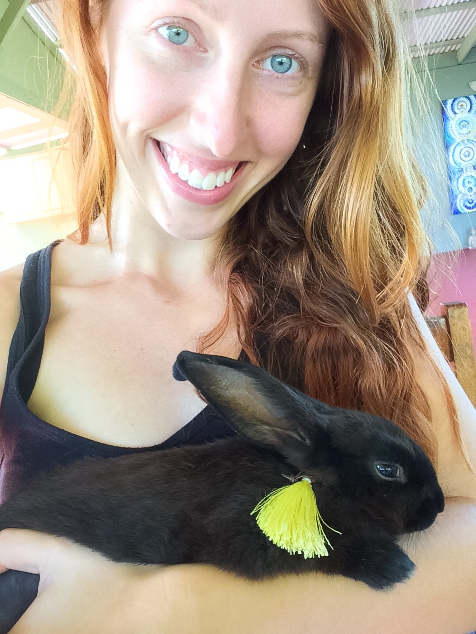 New experiences: befriending a dwarf bunny and having clean, clear, makeup-free skin while traveling :)