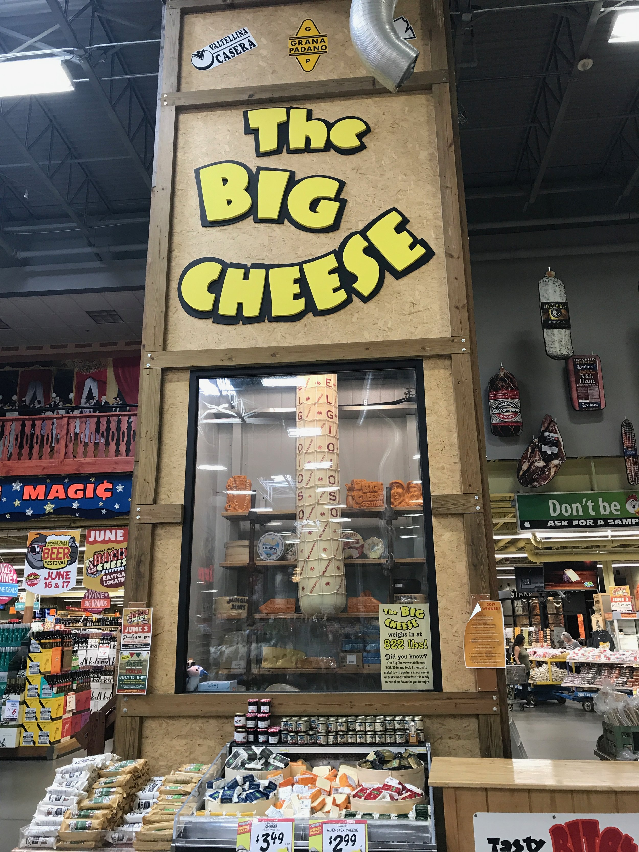 The giant 822 lb cheese!