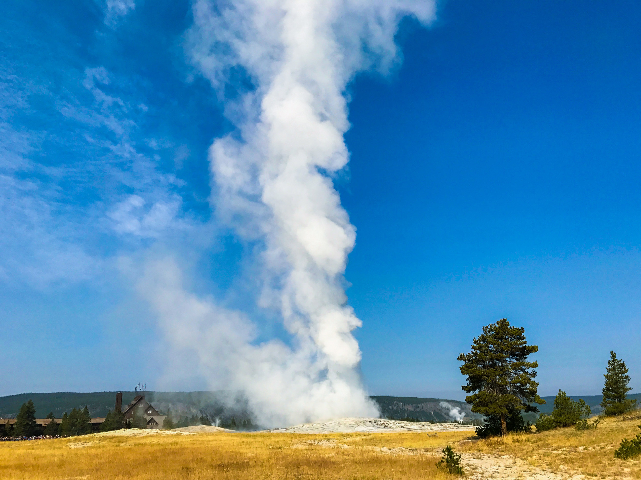 Old Faithful erupting early in the morning