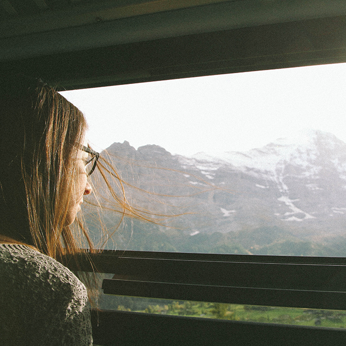 Taking in the view  —Train