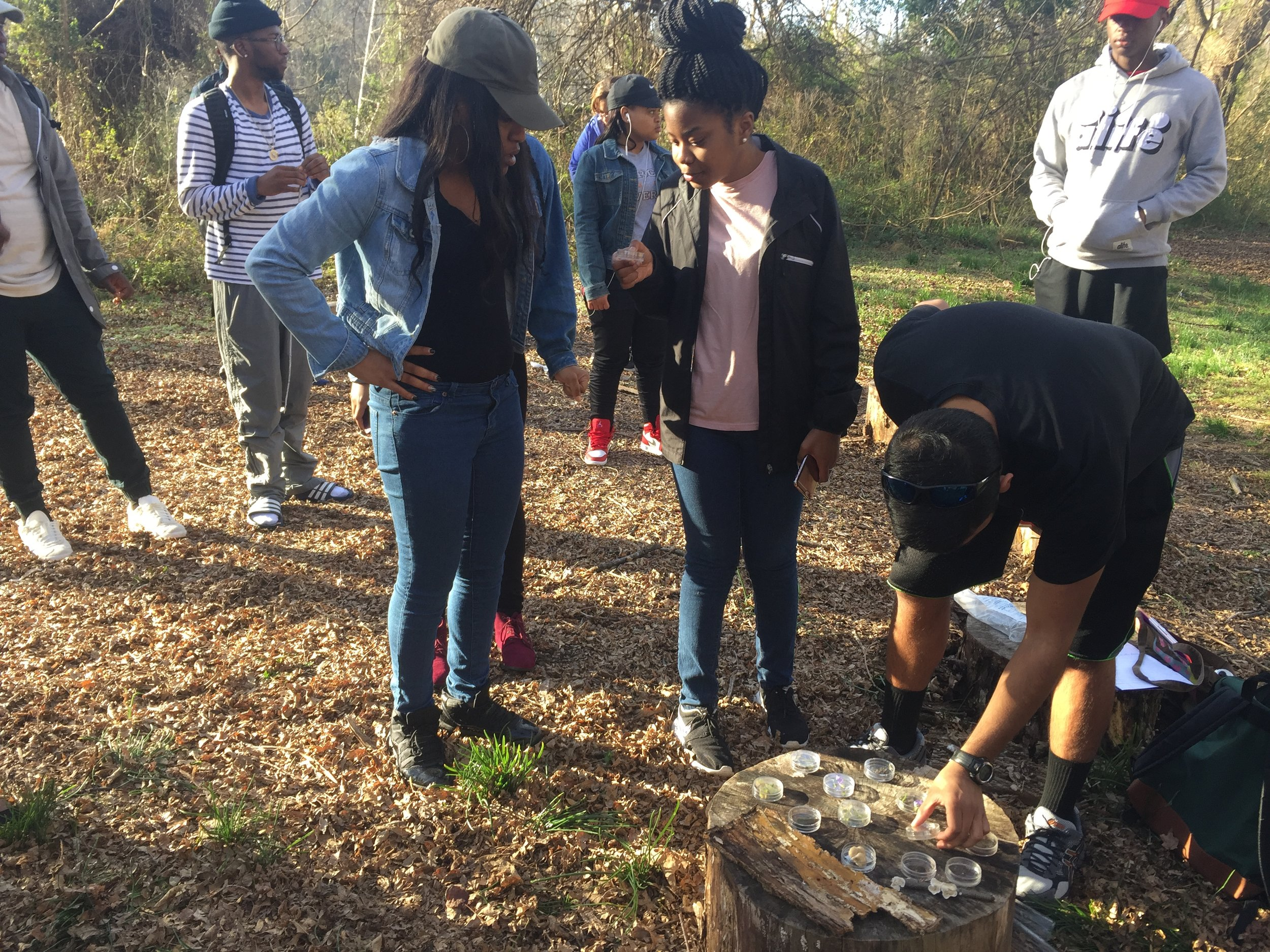 WSSU students examine and classify objects they found at the Gateway Nature Preserve.