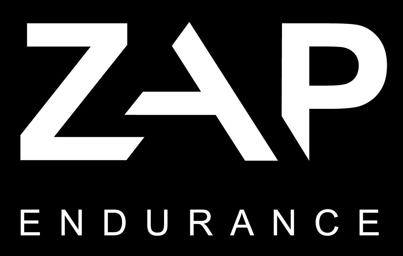 ZAP Endurance logo.jpg