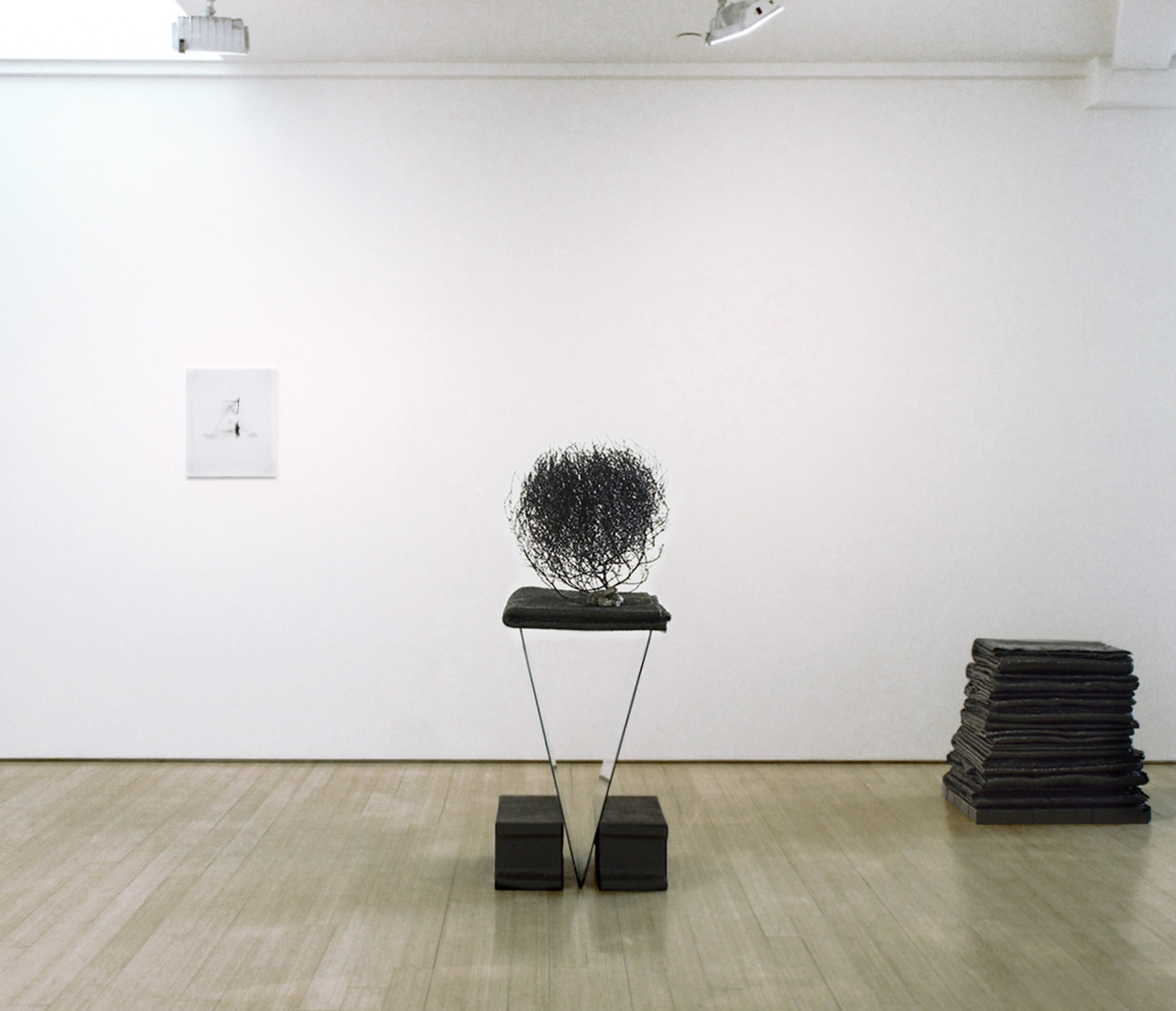 """installation view, """"Maybe I am just a revisionist,"""" at Sgorbati Projects, curated by Seth Sgorbati, 2014"""