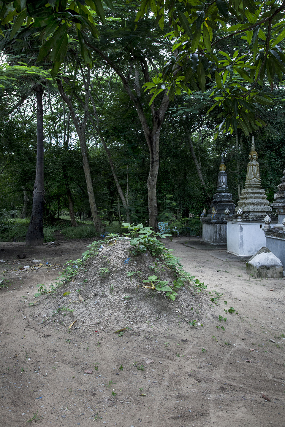 foundation for a stupa, Siem Reap, Cambodia