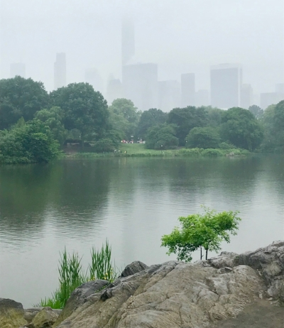 The NYC skyline on a hazy day in Central Park