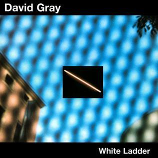 White_Ladder.jpg