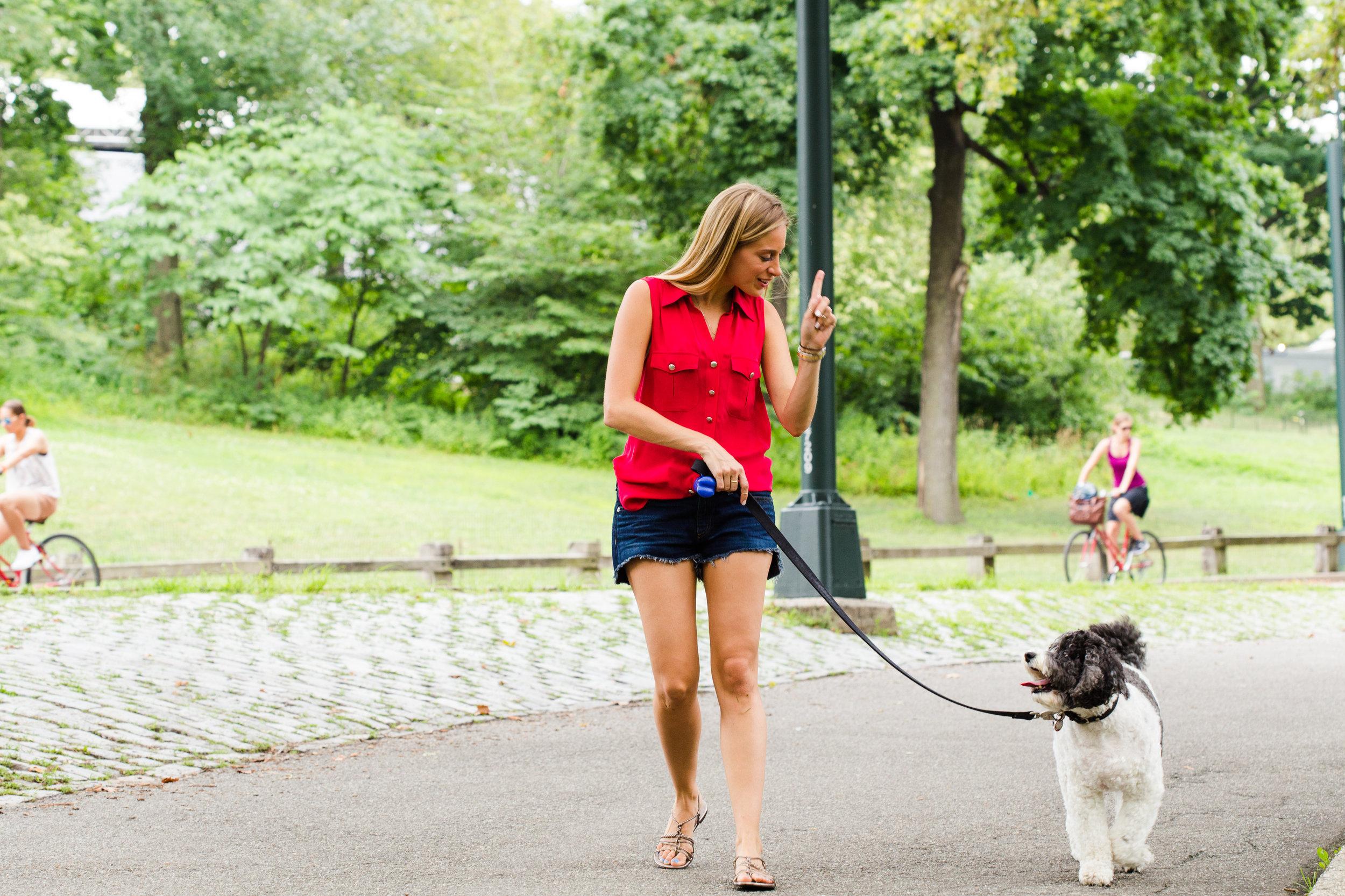 Shelby Semel New York City Dog Training :: Shelby Semel, Senior Trainer & Founder