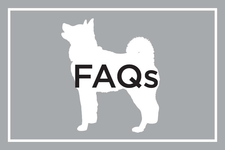 Shelby Semel Dog Training :: FAQs