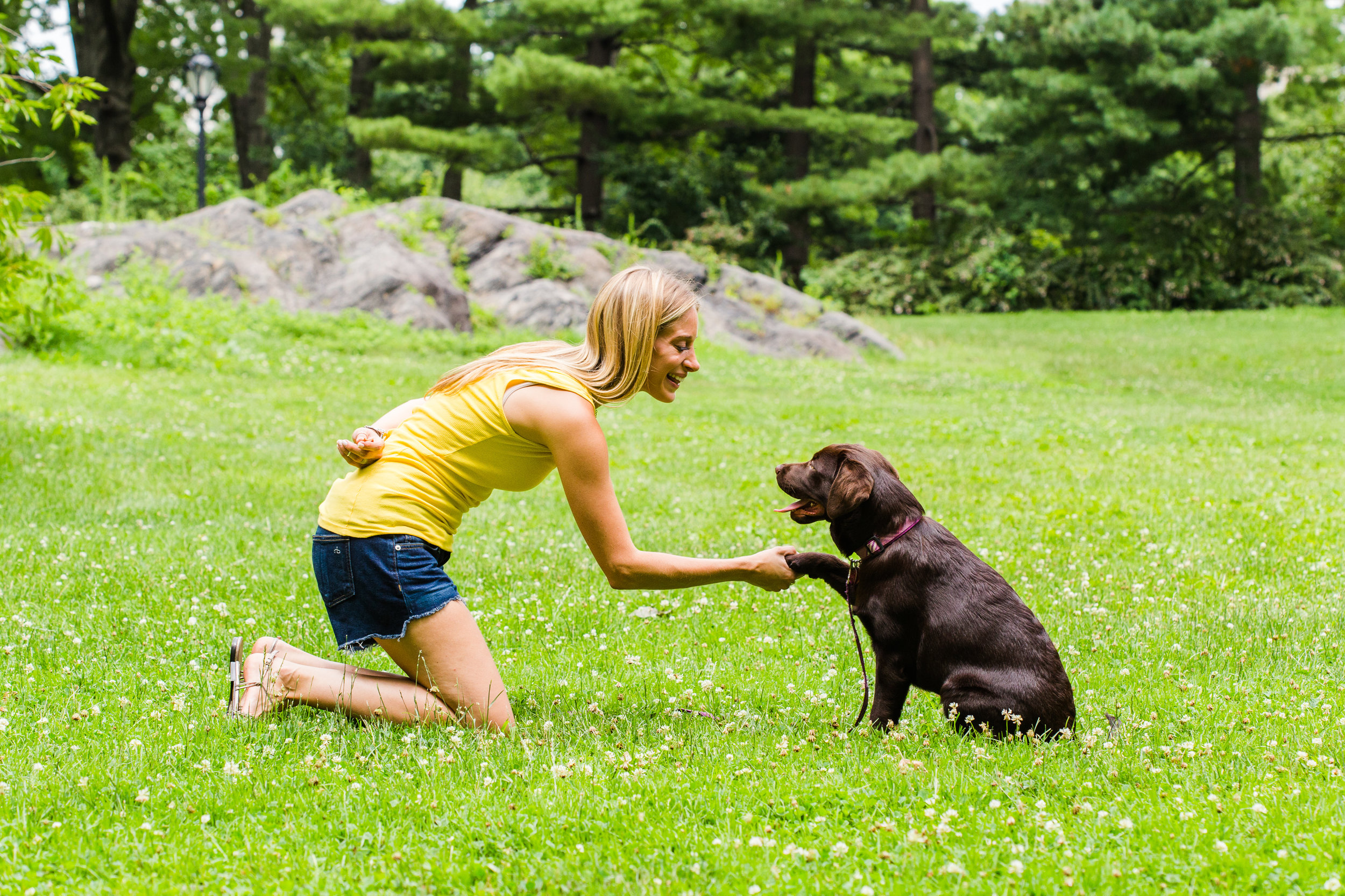 Shelby Semel NYC Dog Training