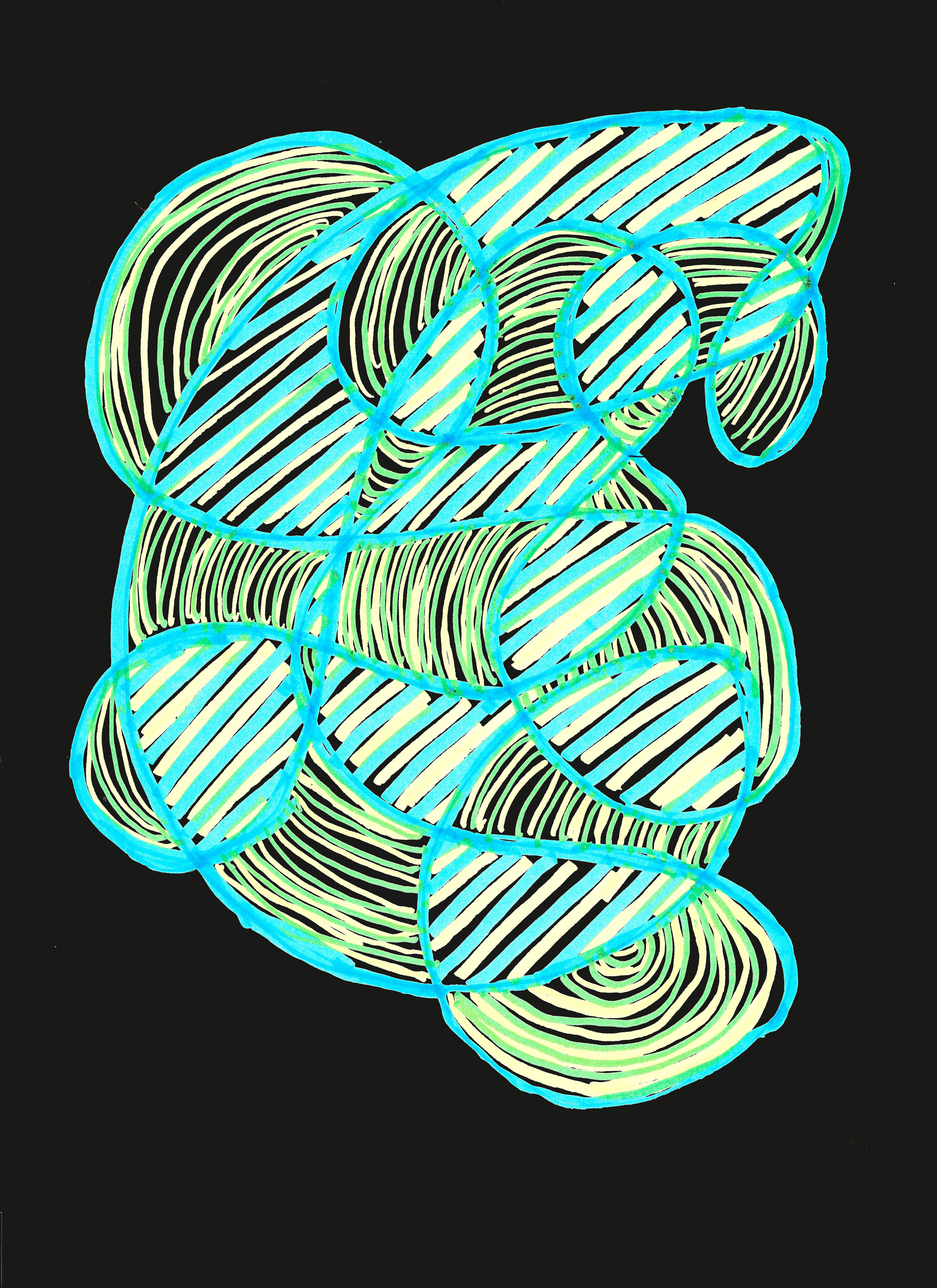 Walrus - display 4.jpg