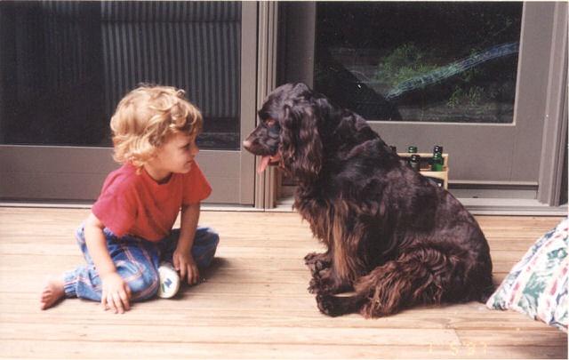 DOgs and children specialty Manhattan Beach dog trainer