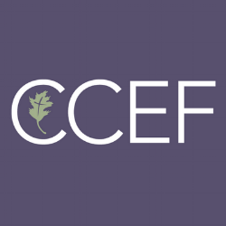 Christian Counseling and Educational Foundation