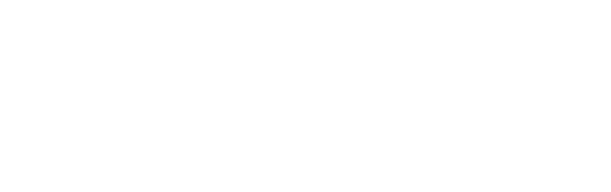 Living Art Design Donovan Designs El Paso Austin Texas Dallas Botanical Living Art Creative Direction.png