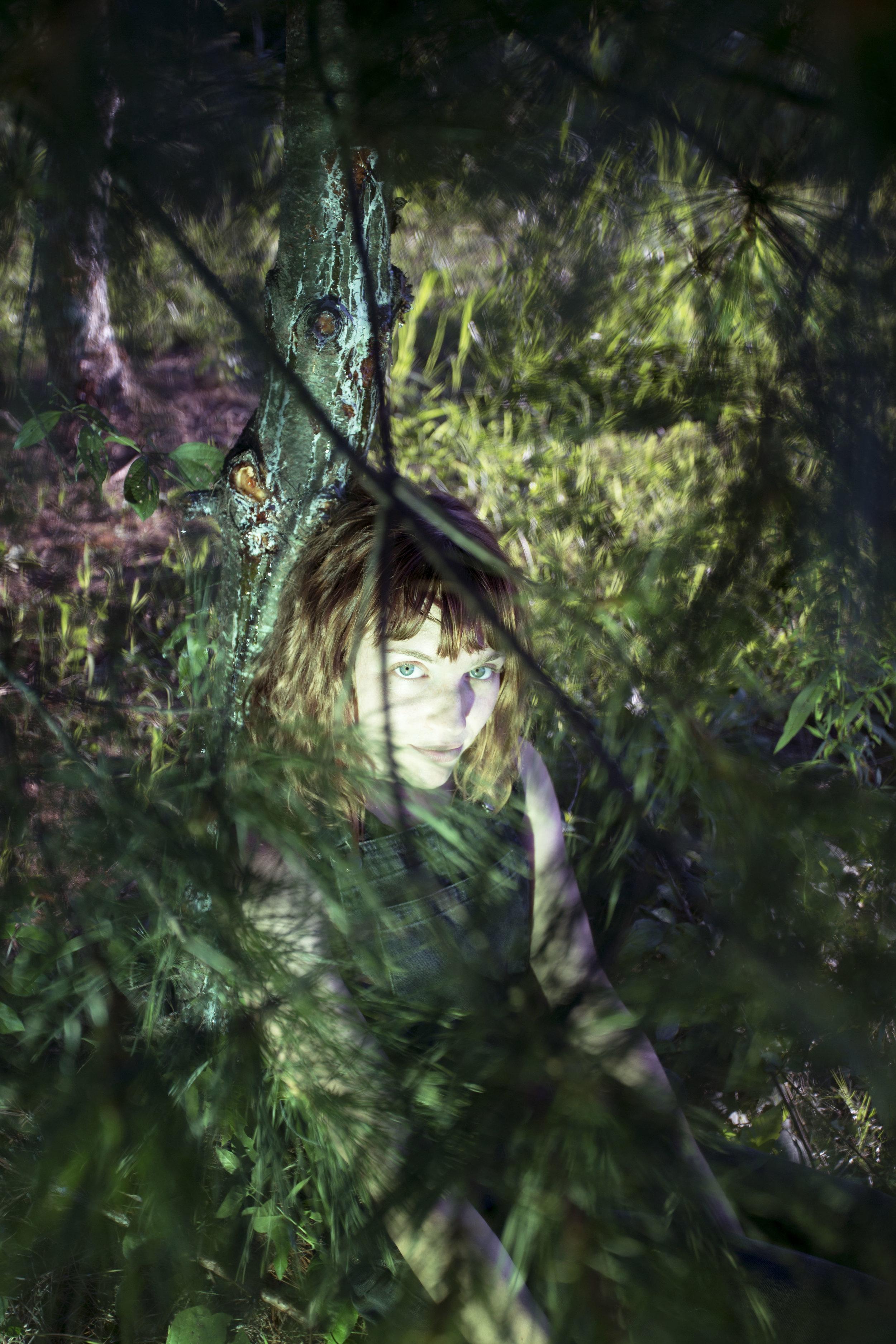 pine9.jpg