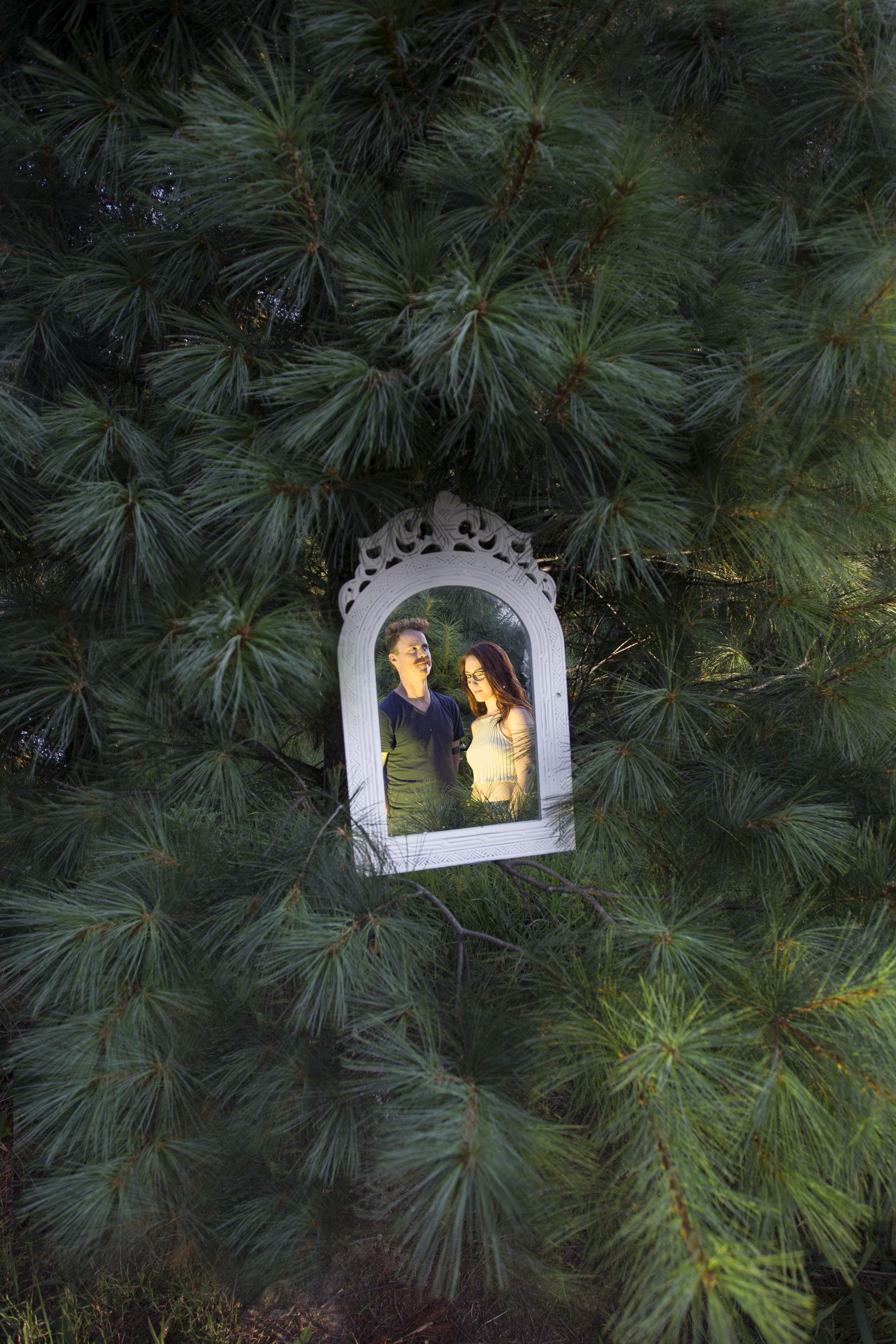 pine12.jpg
