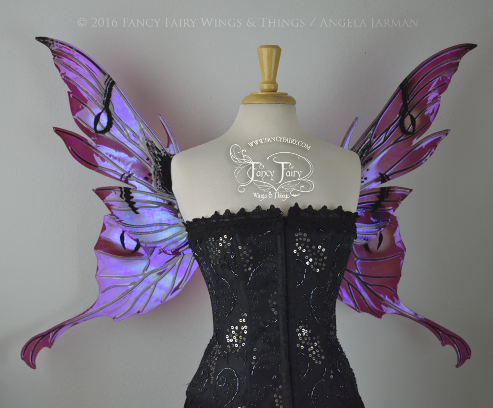 Morgana Fairy Wings Painted Berry With Black Flocking and Veins