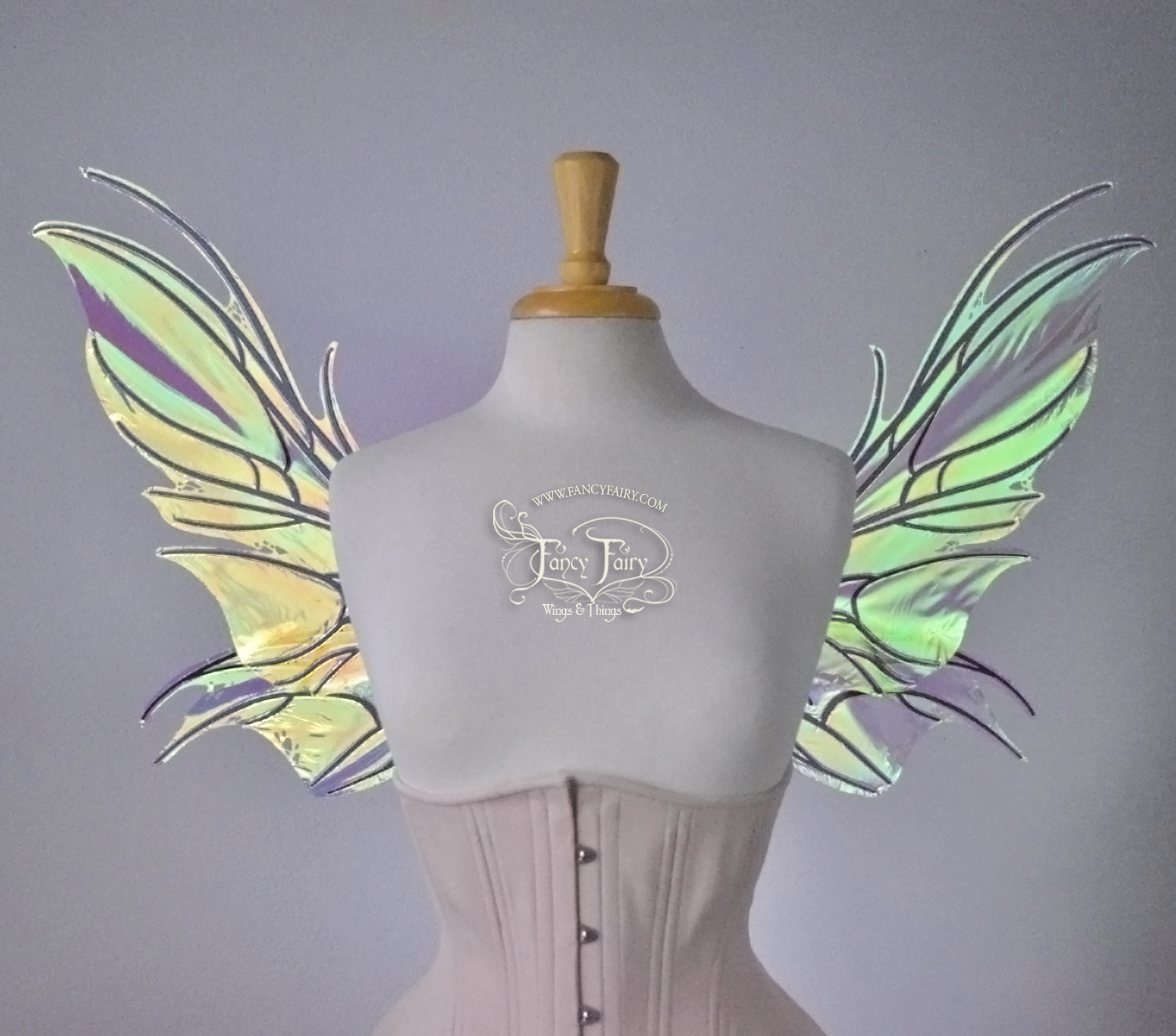 Nightshade Fairy Wings in Iridescent Clear with Black Veins