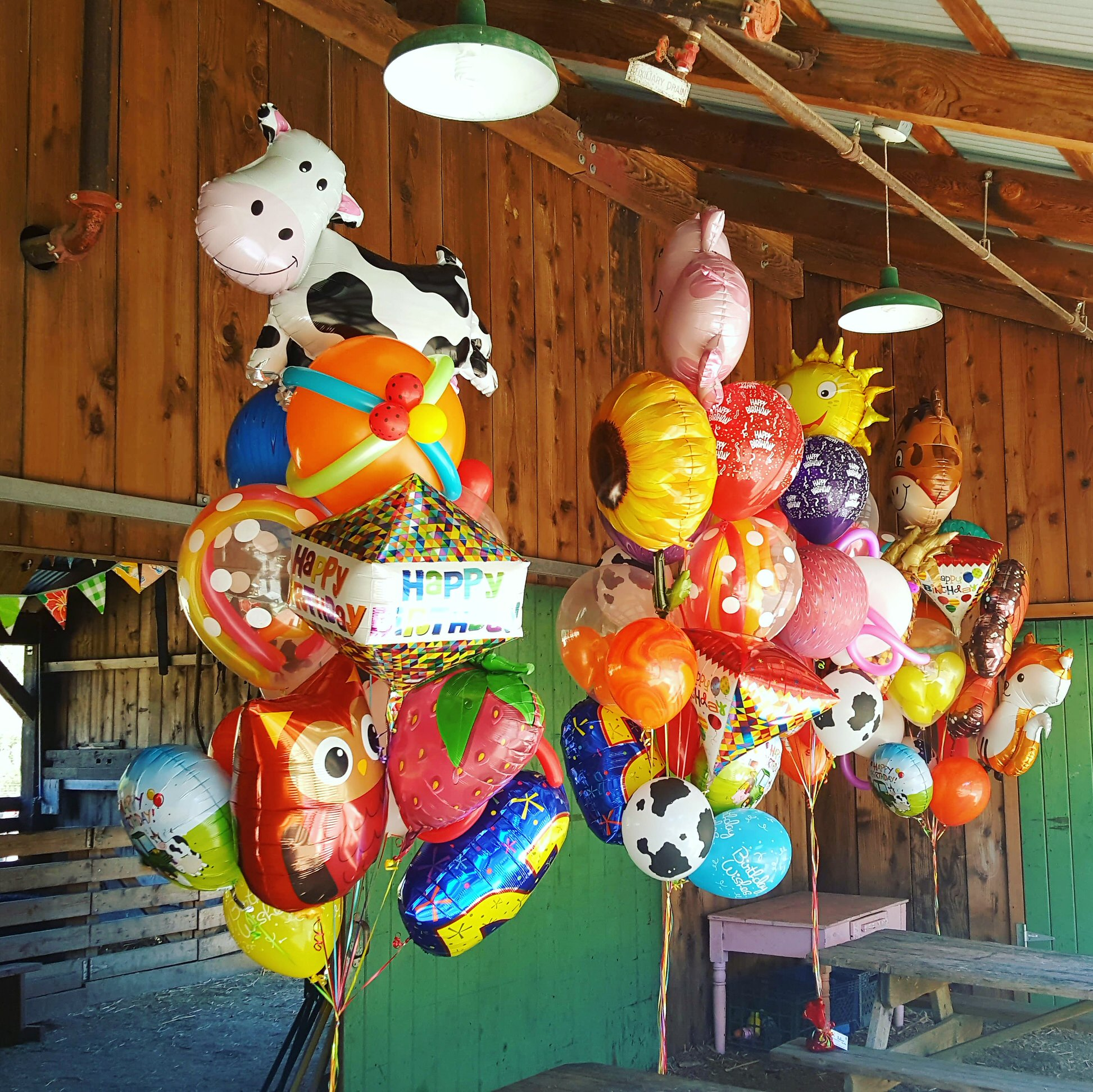 Napa Farm Birthday Party.jpg