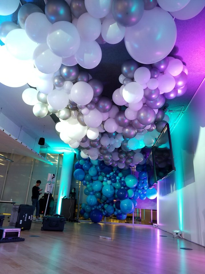Balloon Garland Cloud Photo Backdrop Zim Balloons.jpg