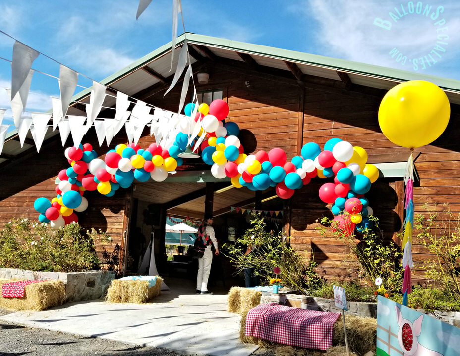 Birthday Party 3FT BalloonTassels Barn latex Garland Zim Balloon Specialties - Sebastopol in Sonoma County_1.jpg