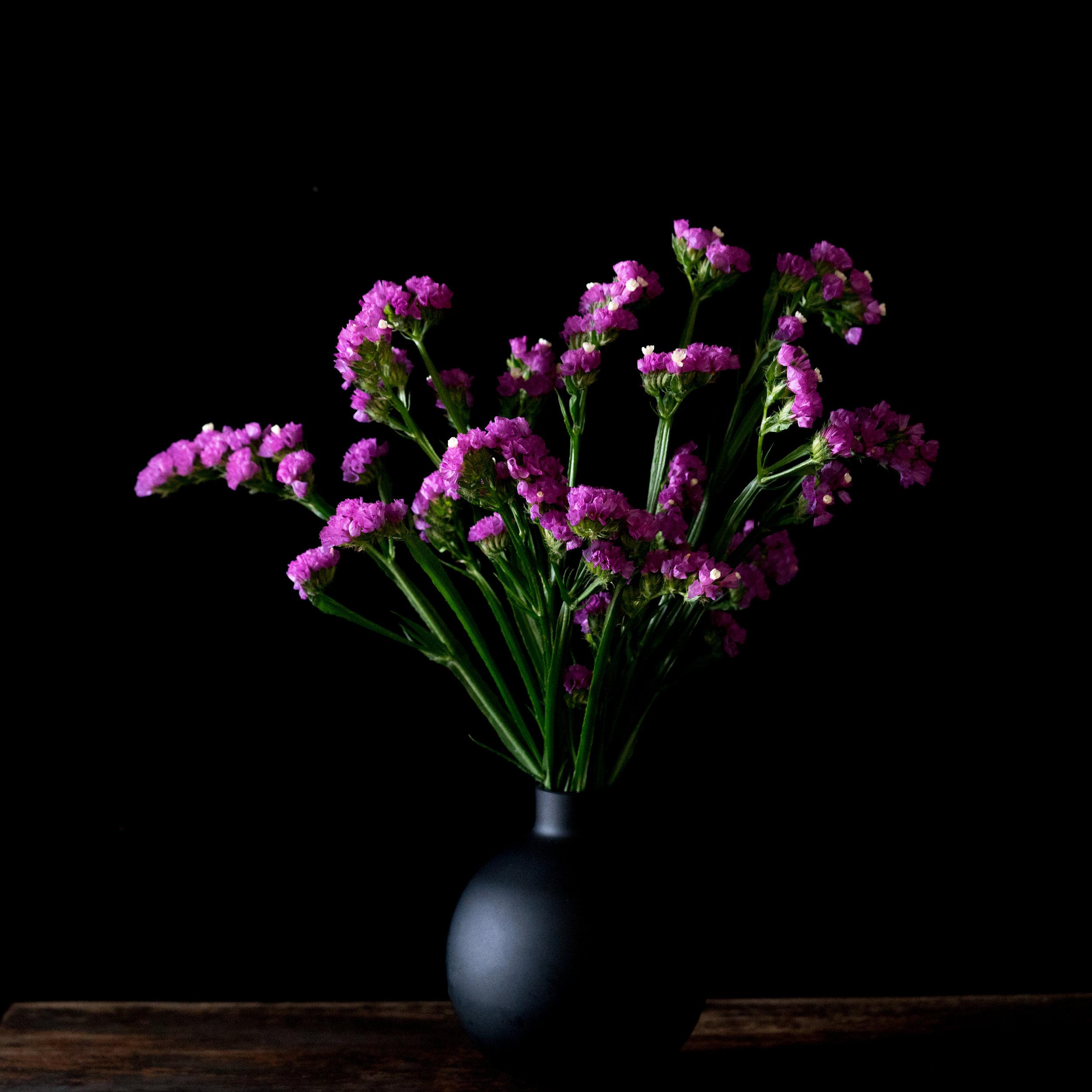 statice vase.jpg