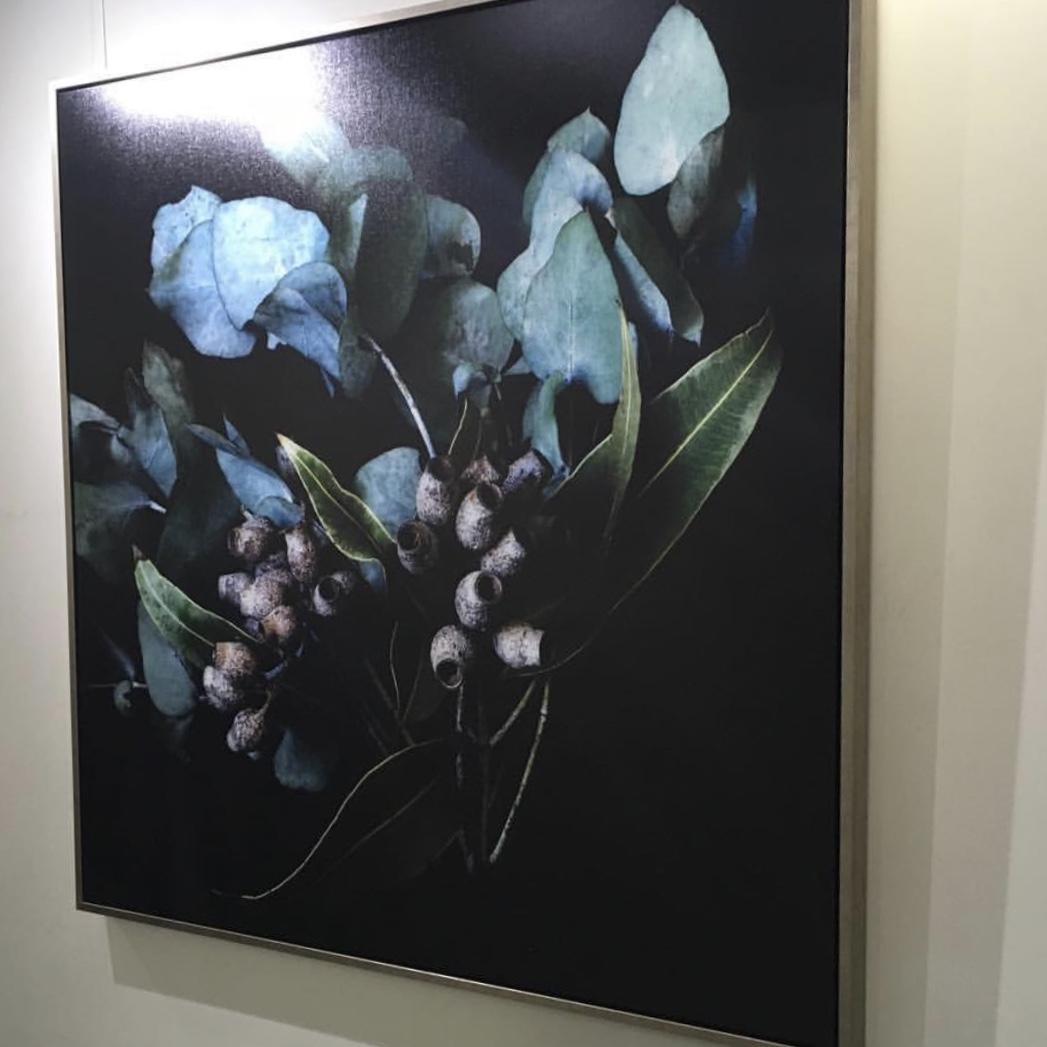 silver gum artwork