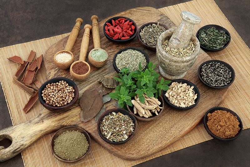 ananda wellness nutrition