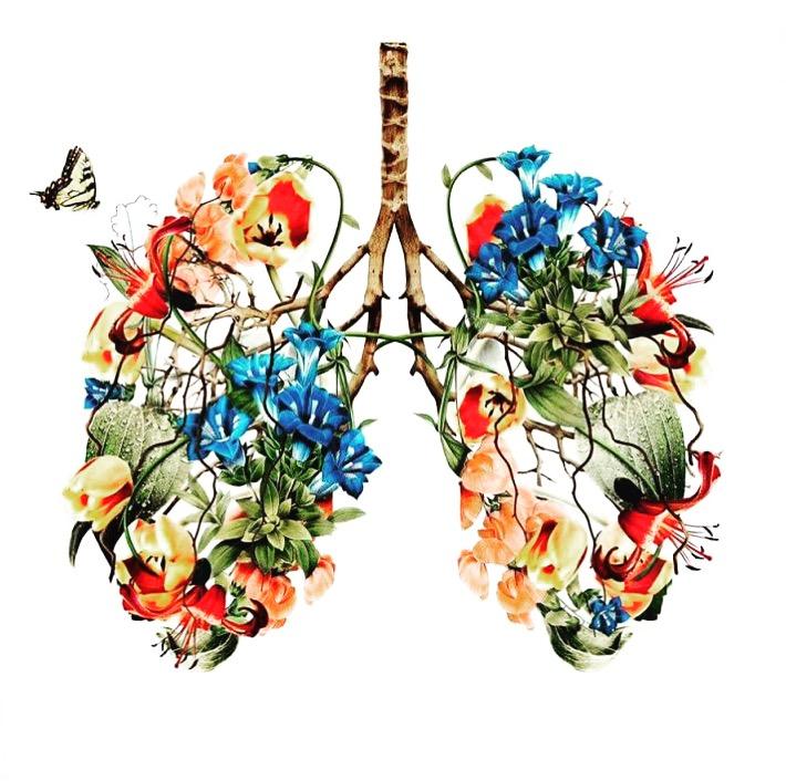 Lung flowers.JPG