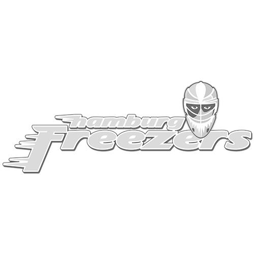 Logo_Freezres_GRAU.JPG