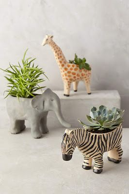 Indoor planters with a sense of humour.