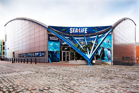 National sea life centre- EDGE conference 2018