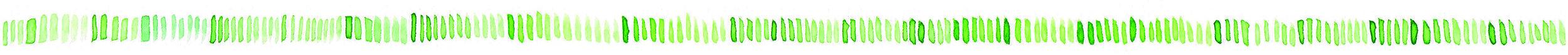Aquarell-Graspapierbecher-Linie.jpg