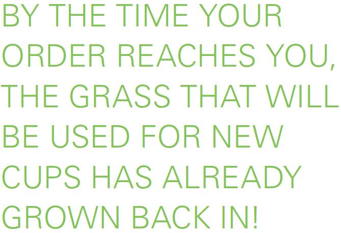 WEBER grasspapercup