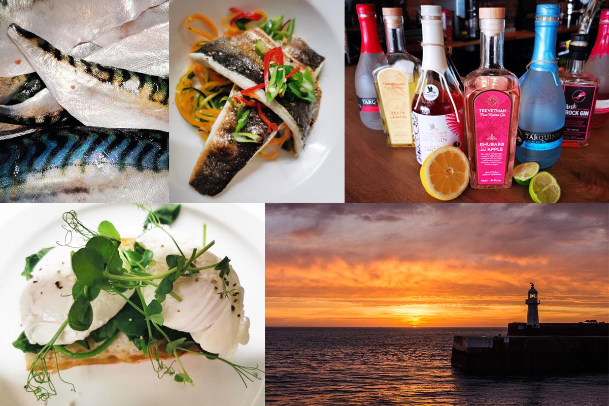 Website_Collage2.jpg